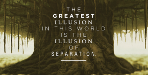 Seperation is an Illusion