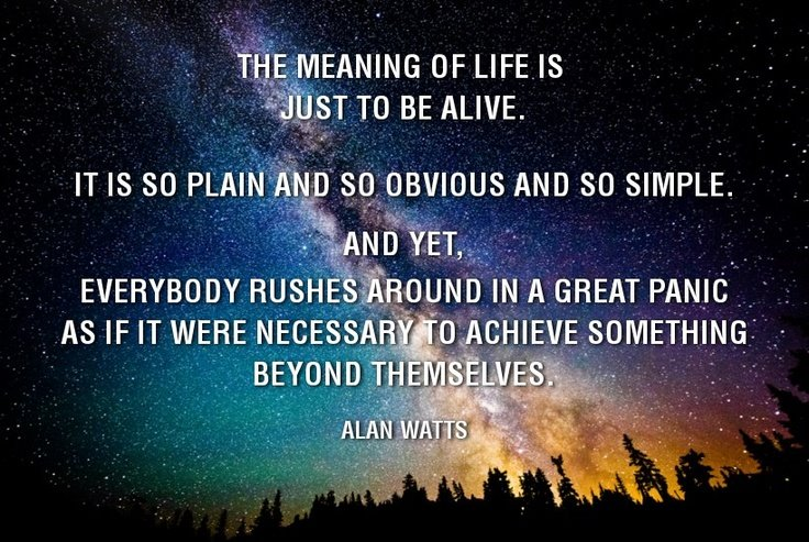 The Meaning of Life is to be Alive