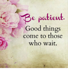 be-patient-good-things-come-to-those-who-wait-8147285
